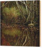 Weeping Branch Wood Print