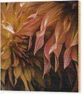 Weeping Petals Wood Print