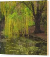 Weeping Pond Wood Print by Fred Lassmann