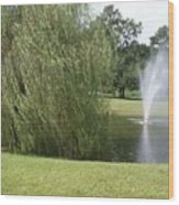 Weeping Willow And Fountain Wood Print