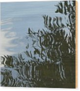 Weeping Willow Reflection Wood Print