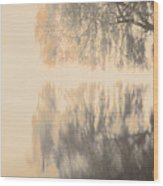 Weeping Willow Woman Wood Print