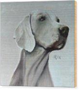 Weimaraner Wood Print