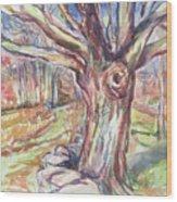 Weir Farm Oak Tree Wood Print