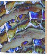 Welk Shell Wood Print