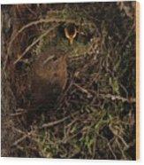 Well Hidden Nest Wood Print