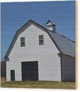 Well Preserved Barn Wood Print