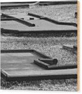 Well Used Mini Golf Course Wood Print