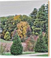 Wellesley College Campus Wood Print