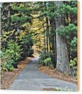 Wellesley College Walkway Wood Print