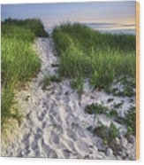 Wellfleet Beach Path Wood Print