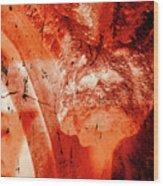 Wells Cathedral Gargoyles Color Negative B Wood Print