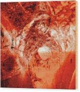 Wells Cathedral Gargoyles Color Negative H Wood Print
