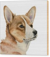 Welsh Corgi Dog Painting Wood Print