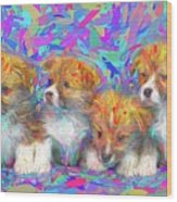 Welsh Corgi Pups Wood Print