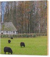 Welsh Farmhouse Wood Print