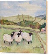 Wensleydale Sheep Wood Print