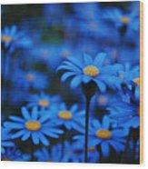 We're All Blue Wood Print
