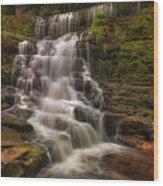 West Bank View Of Sgwd Isaf Clun-gwyn Falls Wood Print