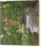 West Branch Of The Rifle River Wood Print
