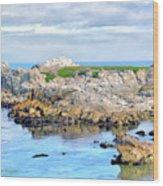 West Coast Seascape 3 Wood Print