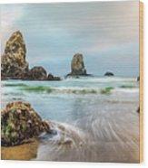 West Coast Usa Wonder Wood Print
