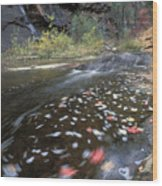 West Fork Oak Creek And Fall Color Wood Print by Rich Reid