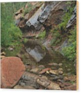 West Fork Trail River And Rock Vertical Wood Print by Heather Kirk