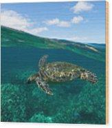 West Maui Green Sea Turtle Wood Print