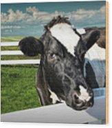 West Michigan Dairy Cow Wood Print