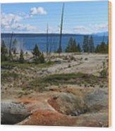 West Thumb Geyer At Yellowstone Lake Wood Print