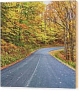 West Virginia Curves - In A Yellow Wood - Paint Wood Print
