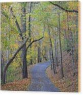 West Virginia Fall Scene Wood Print