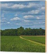 West Virginia Field  Wood Print