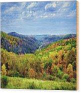 West Virginia Wood Print