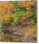 West Virginia Paradise Wood Print