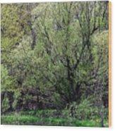 Westcreek Reservation 5 Wood Print