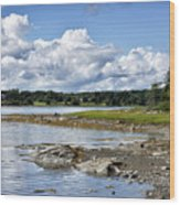 Western Bay - Oldhouse Cove Near Trenton Maine Wood Print