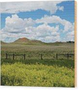 Western Color Wood Print