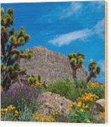 Western Grand Canyon Area Wood Print
