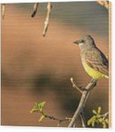 Western Kingbird Wood Print