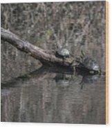 Western Painted Turtles On A Log Wood Print