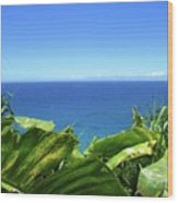 Western Shore Kauai Wood Print