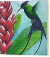 Western Streamertail Hummingbird Wood Print