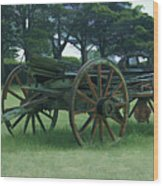 Western Wagon Wood Print