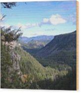 Western Washington Wood Print