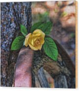 Western Yellow Rose Viii Wood Print