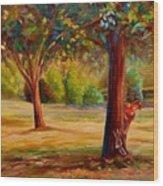 Westmount Park Montreal Wood Print