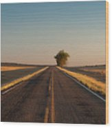 Westward Horizon Wood Print