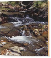Rocks And Water In Autumn Wood Print
